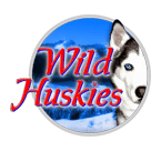 Play Wild Huskies now at InterCasino