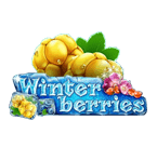 Play Winter Berries now at Free Spins Casino