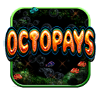 Play Octopays