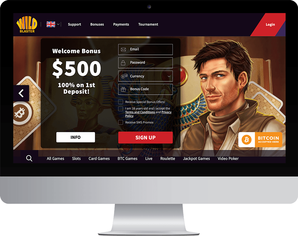 wildblaster Casino on desktop
