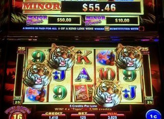 Year of the Tiger Slot